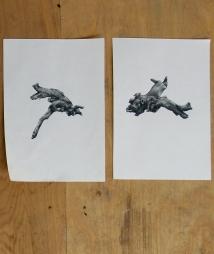 drift wood, pencil on paper, 2015